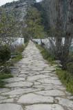 Limyra march 2012 5229.jpg