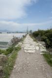 Limyra march 2012 5235.jpg
