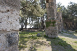 Phaselis march 2012 5266.jpg