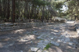 Phaselis march 2012 5298.jpg