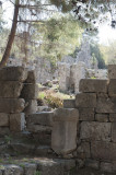 Phaselis march 2012 5303.jpg