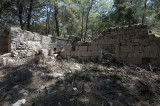 Phaselis march 2012 5328.jpg