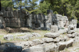 Phaselis march 2012 5351.jpg