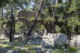 Phaselis march 2012 5363.jpg