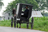 Amish in Tennessee