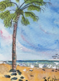 ACEO Palm Tree watercolour pen and ink SOLD