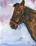 ACEO HorseWatercolour