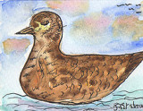 ACEO DUCK Watercolour, pen and ink