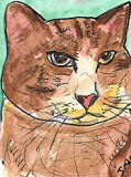 ACEO Big Fat Cat Watercolour,pen and ink. SOLD