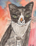 ACEO Red Hot Cat SOLD
