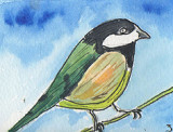 ACEO Great Tit