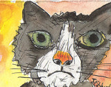 ACEO Sad Cat Watercolour,pen and ink SOLD