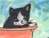 ACEO SALE Kitten no 2 in a Red Bucket