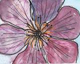 ACEOPURPLE FLOWER