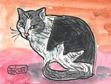 ACEOFigaro The Cat