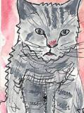 ACEOGrumpy Cat
