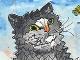 ACEO FITZ The cat in watercoloue pen and ink