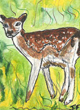 ACEO Fawn