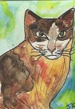 ACEO Mr Brown Cat Original mini Art now SOLD