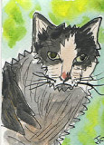 ACEO Mr Grump The Cat SOLD