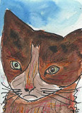 ACEO TIGER THE CAT
