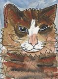 ACEO Rupert The Cat