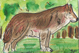 ACEO The Wolf Dog