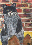 ACEO Cat On A Fence Original watercolour pen and ink