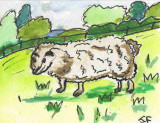 ACEO FAWN THE SHEEP