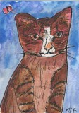 ACEO Watercolour pen and ink.TIDDLES