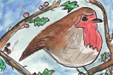 ACEO Red Robin