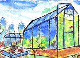 ACEO Allotments greenhouse Watercolour,pen and ink SOLD
