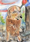 Dog in watercolour pen and ink illustration