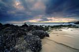 Laguna Beach -13