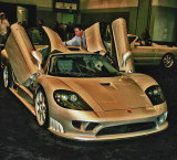 Saleen / Ford