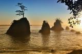 Tillamook Bay OR