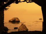 Coastal Birds at Sunrise