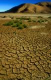 Dry Mud Flats