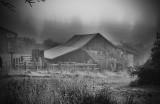 Barn in a Mist
