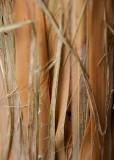 42 bamboo