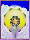 b 20 Lotus Paradise