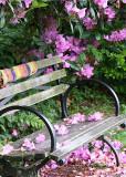 34 blossom bench