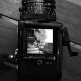 Cameras Antigas - Old Cameras