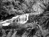 Norm Wooldridge, Ludlow Falls #2
