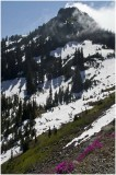 G_HylenS_Chinook Pass with Wind and Snow on an August afternoon.jpg