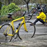David Warren: Rhapsody In Yellow