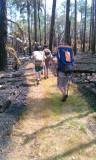 Troop 445 hiking in Lake Kissimmee State Park.jpg