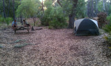 Campsite at Lake Kissimmee State Park.jpg
