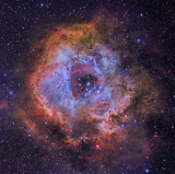 Rosette in Hubble colours