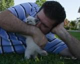 kitty_cat